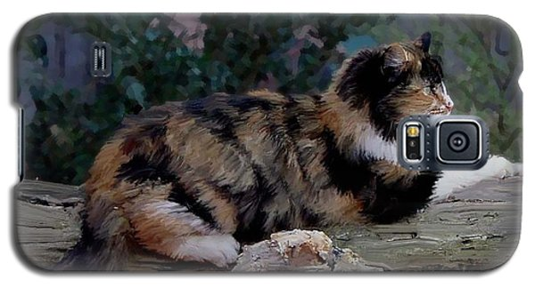 Resting Calico Cat Galaxy S5 Case