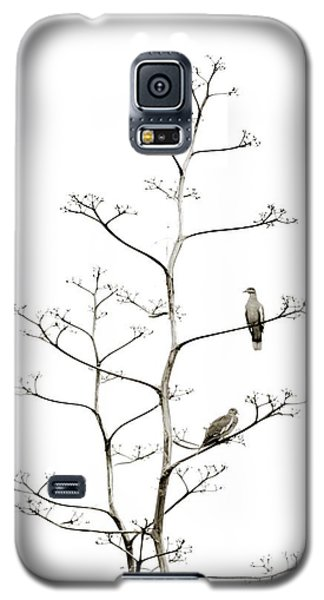Resting Doves Galaxy S5 Case by Darla Wood