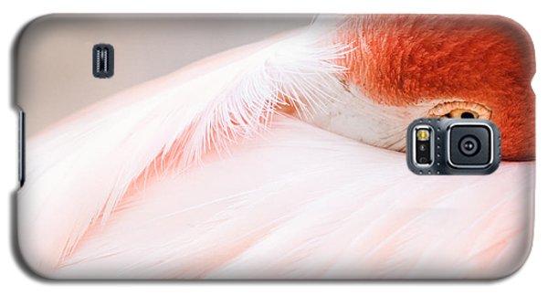 Resting Flamingo Galaxy S5 Case