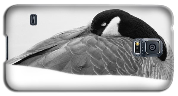 Galaxy S5 Case featuring the photograph Resting Goose In Bw by Anita Oakley