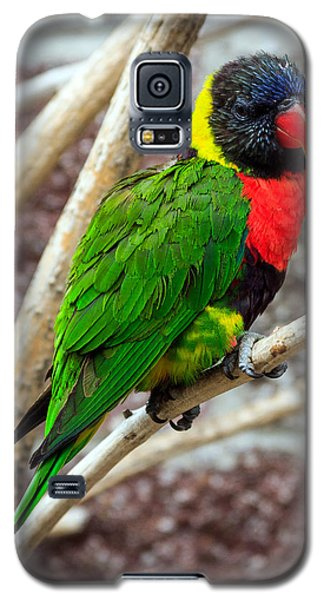 Galaxy S5 Case featuring the photograph Resting Lory by Sennie Pierson