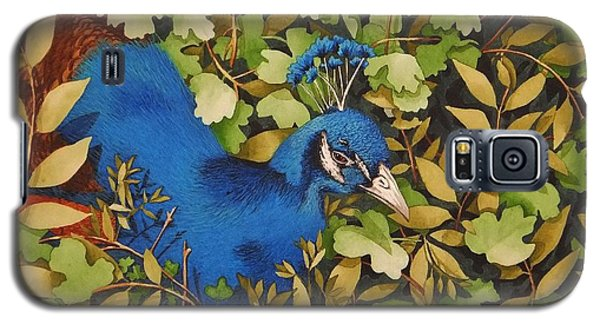 Resting Peacock Galaxy S5 Case by Katherine Young-Beck