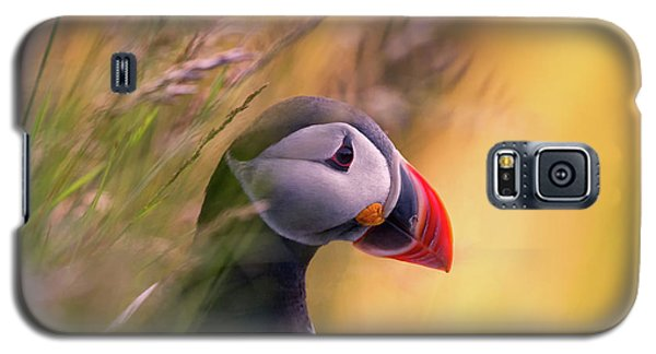 Resting Puffin Galaxy S5 Case