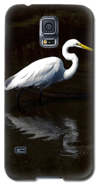 Resting Reflection Galaxy S5 Case