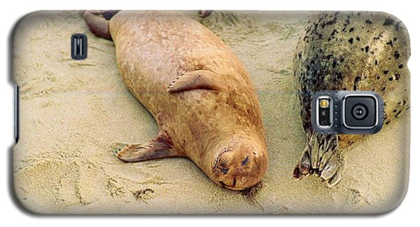 Galaxy S5 Case featuring the photograph Resting Seal by Kathy Bassett