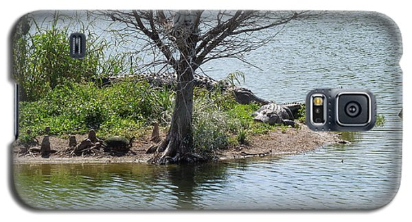 Galaxy S5 Case featuring the photograph Resting Under A Tree by Ron Davidson