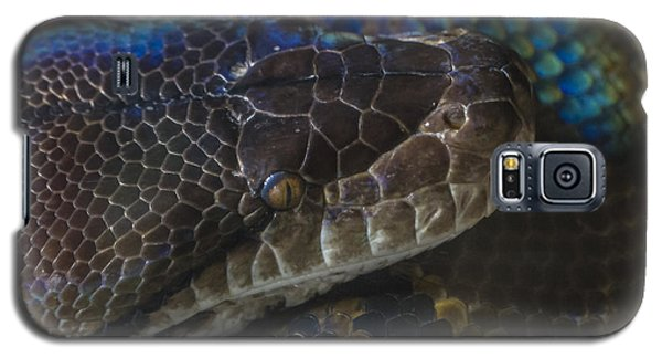 Reticulated Python With Rainbow Scales Galaxy S5 Case