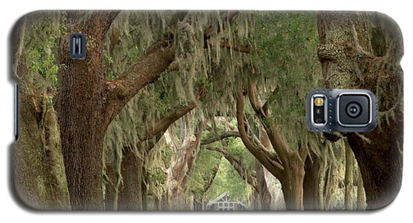 Retreat Avenue Of The Oaks Galaxy S5 Case