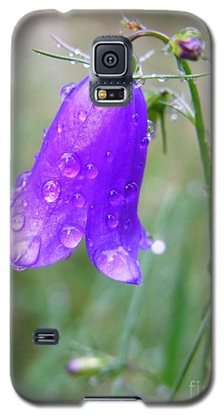 Galaxy S5 Case featuring the photograph Revived by Agnieszka Ledwon