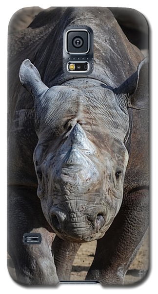 Rhinoceros Galaxy S5 Case