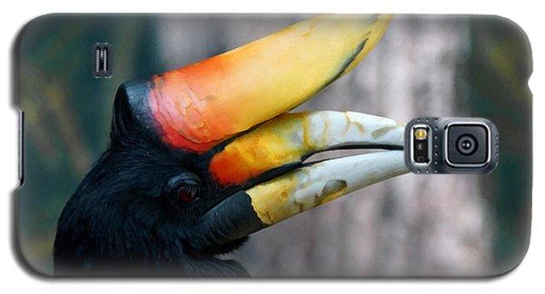 Rhinoceros Hornbill  Galaxy S5 Case