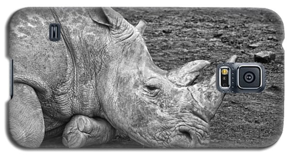 Rhinoceros Galaxy S5 Case by Nancy Aurand-Humpf