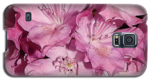 Rhododendron Bliss Galaxy S5 Case by Sara  Raber