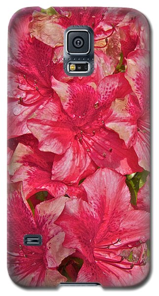 Galaxy S5 Case featuring the photograph Rhododendron Closeup by Todd Kreuter