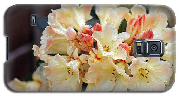Rhododendron Nancy Evans Galaxy S5 Case