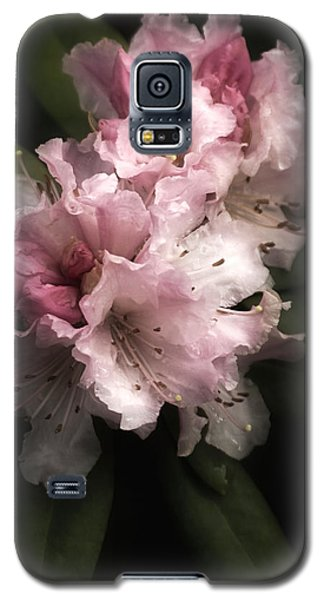 Rhododendron Study Galaxy S5 Case by Richard Cummings