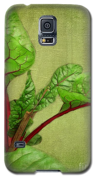 Rhubarb Galaxy S5 Case