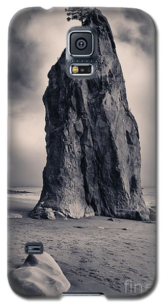 Rialto Wonder Galaxy S5 Case