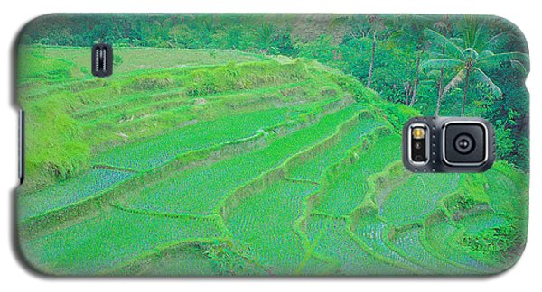Rice Fields In Indonesia Galaxy S5 Case