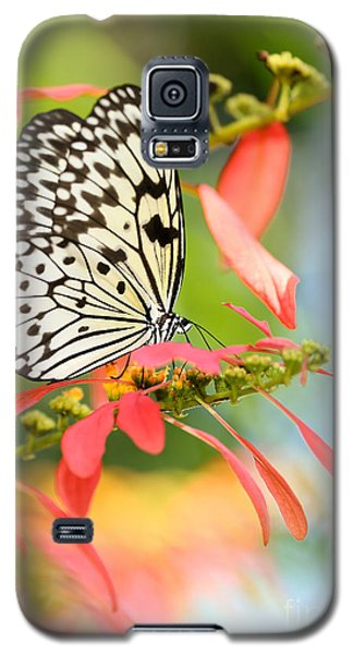 Rice Paper Butterfly In The Garden Galaxy S5 Case