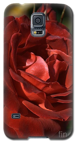 Galaxy S5 Case featuring the photograph Rich Is Rose by Joy Watson