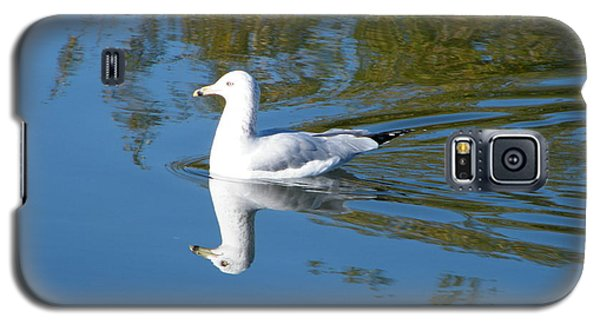 Ring-billed Gull Galaxy S5 Case