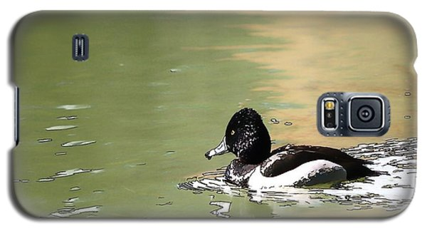 Galaxy S5 Case featuring the photograph Ring-neck Duck by Ludwig Keck