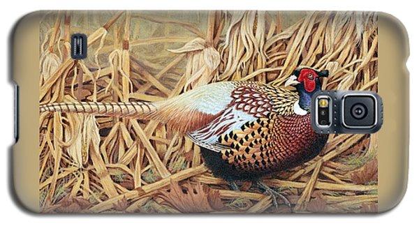Pheasant Galaxy S5 Case - Ring-necked Pheasant by Ken Everett