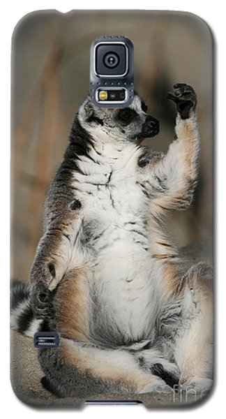 Galaxy S5 Case featuring the photograph Ring-tailed Lemur by Judy Whitton