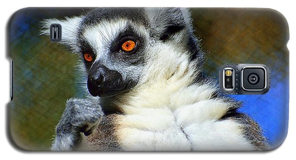 Galaxy S5 Case featuring the photograph Ring-tailed Lemur by Lisa L Silva