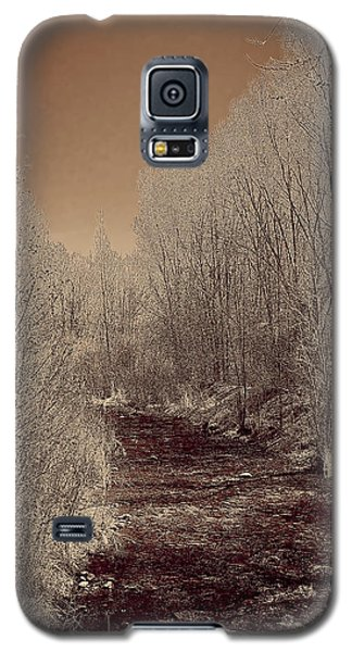 Rio Taos Bosque Iv Galaxy S5 Case