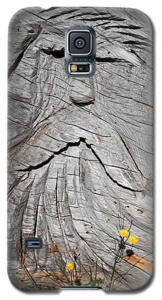 Rip Van Winkle Galaxy S5 Case by Tikvah's Hope