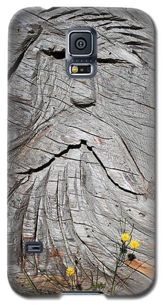 Rip Van Winkle Galaxy S5 Case