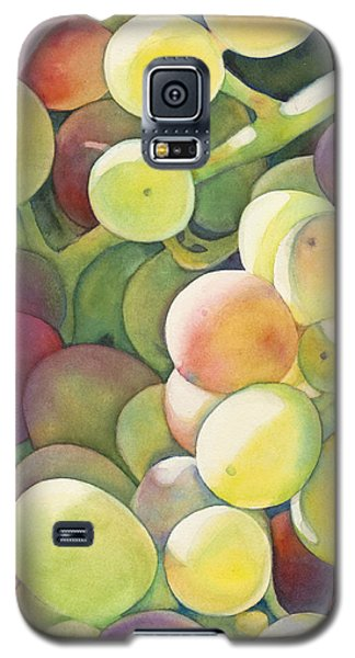 Ripening Galaxy S5 Case by Sandy Haight