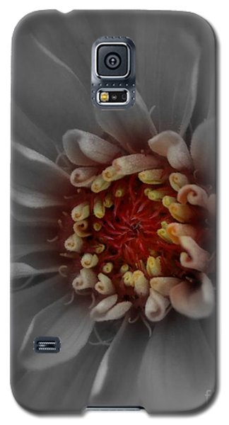Galaxy S5 Case featuring the photograph Rise And Shine by Geri Glavis