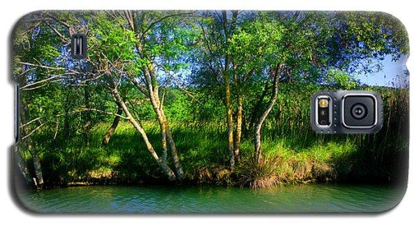 River Beauty Galaxy S5 Case by Hanza Turgul