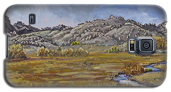 Galaxy S5 Case featuring the painting River Mural Autumn View  by Dawn Senior-Trask