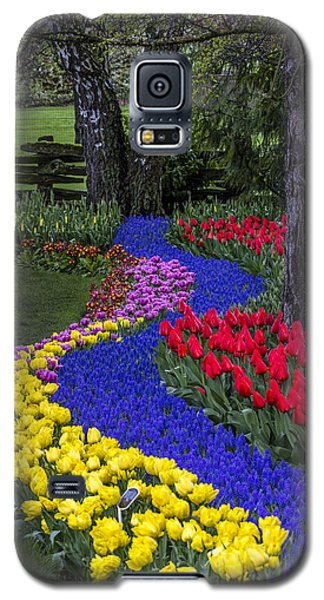 River Of Blue Galaxy S5 Case