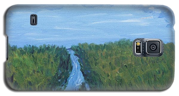 Galaxy S5 Case featuring the painting River Running Through The Grassland by Martin Blakeley