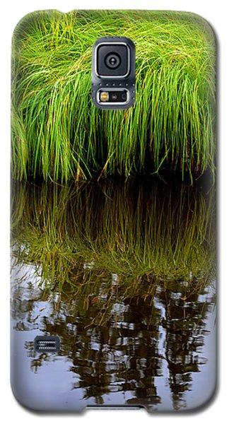 Riverbank Wild Grass Galaxy S5 Case
