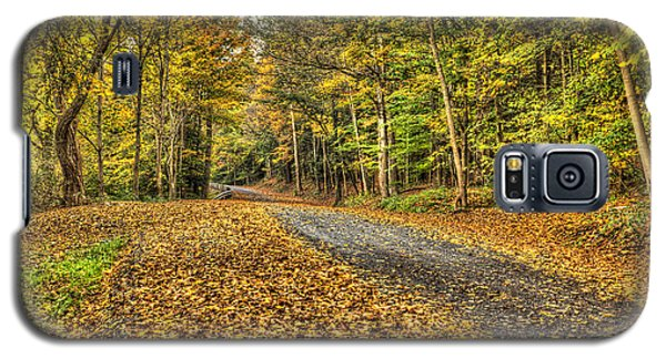 Road Into Woods Galaxy S5 Case