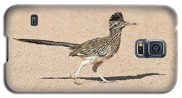 Galaxy S5 Case featuring the photograph Road Runner On The Road by Tom Janca