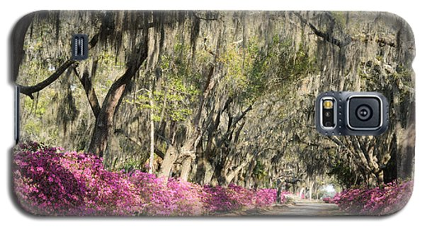 Galaxy S5 Case featuring the photograph Road With Azaleas And Live Oaks by Bradford Martin