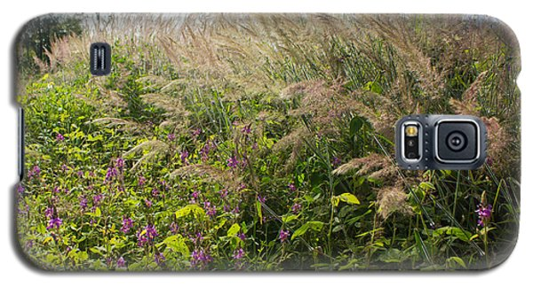 Galaxy S5 Case featuring the photograph Roadside Blooms by Jose Oquendo