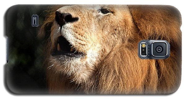 Galaxy S5 Case featuring the photograph Roar - African Lion by Meg Rousher