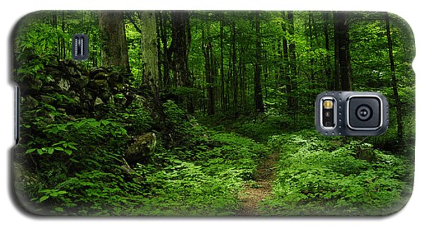 Galaxy S5 Case featuring the photograph Roaring Fork Trail by Debbie Green