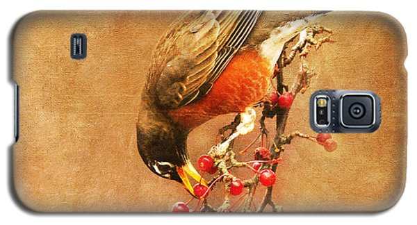 Robin Eating Berries Galaxy S5 Case