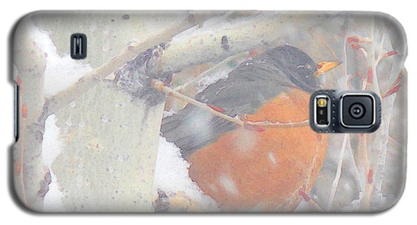 Galaxy S5 Case featuring the photograph Robin In April Snow by Anastasia Savage Ealy