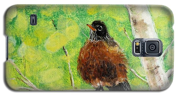 Robin On Aspen Galaxy S5 Case by Susan Fisher