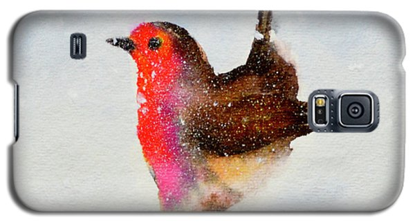 Robin Redbreast Galaxy S5 Case